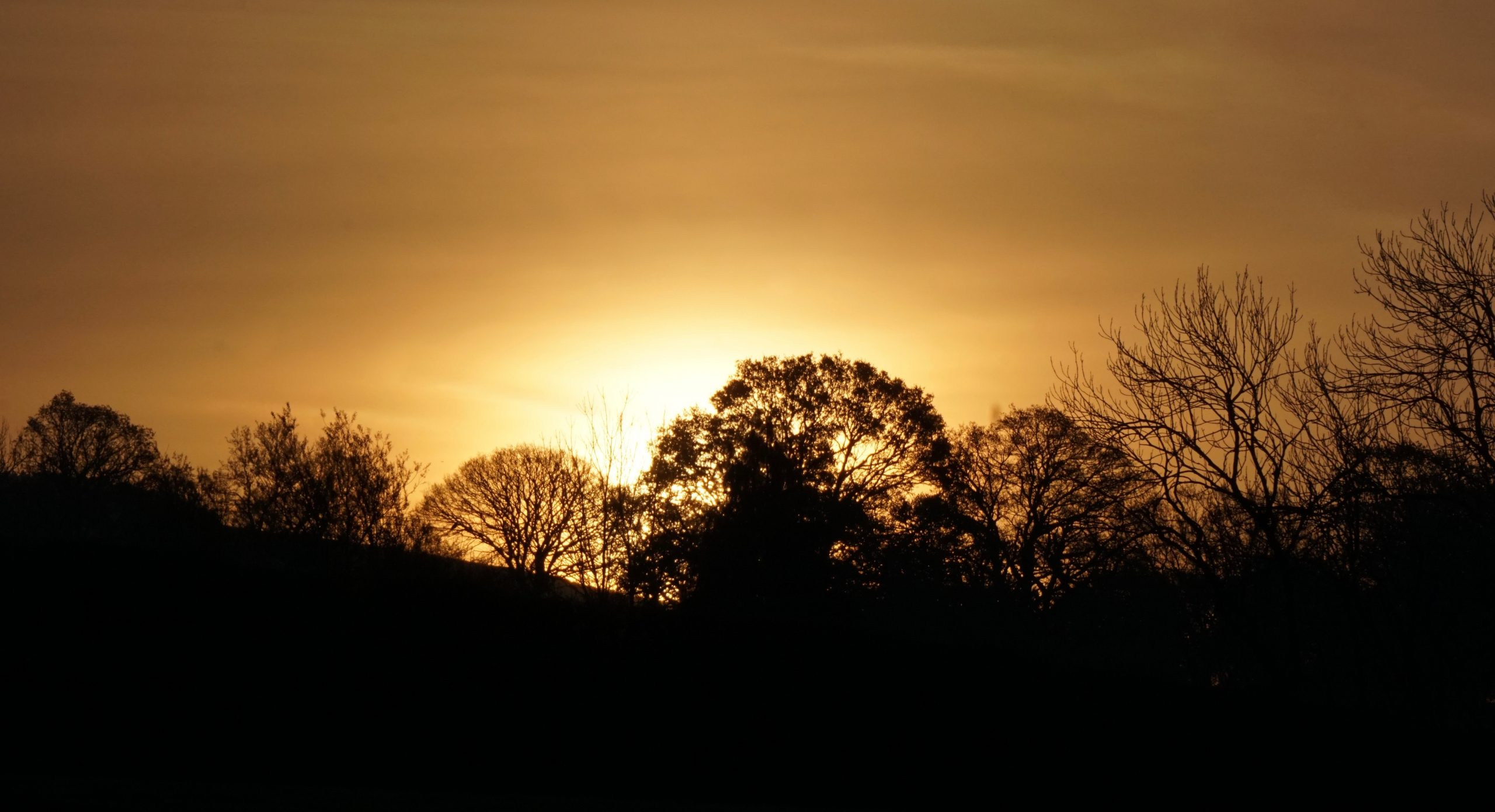Sunrise in west Shropshire, near the Welsh border (photo by Laurence Perkins)