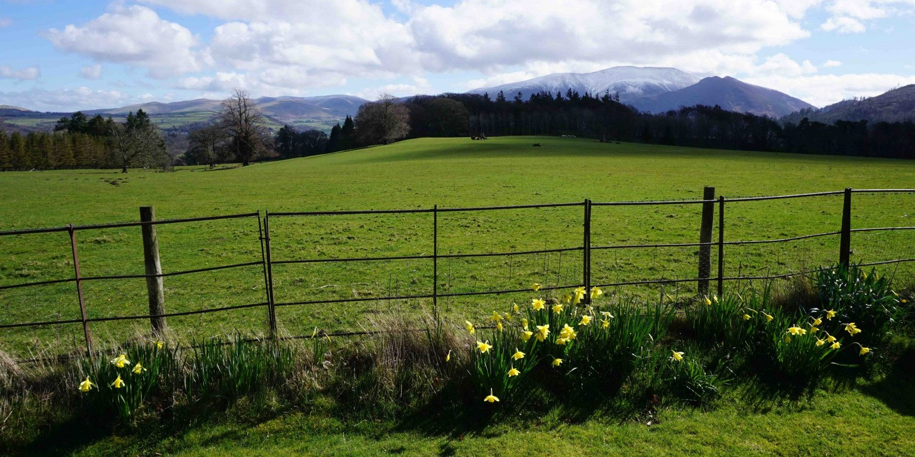 Springtime view at the front of Higham Hall